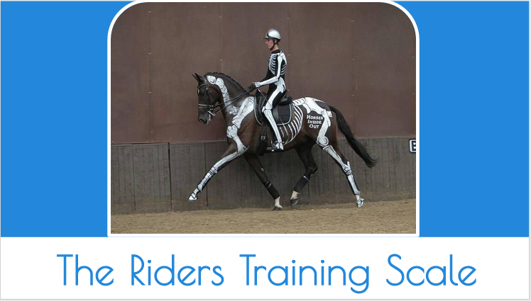 The Riders Training Scale