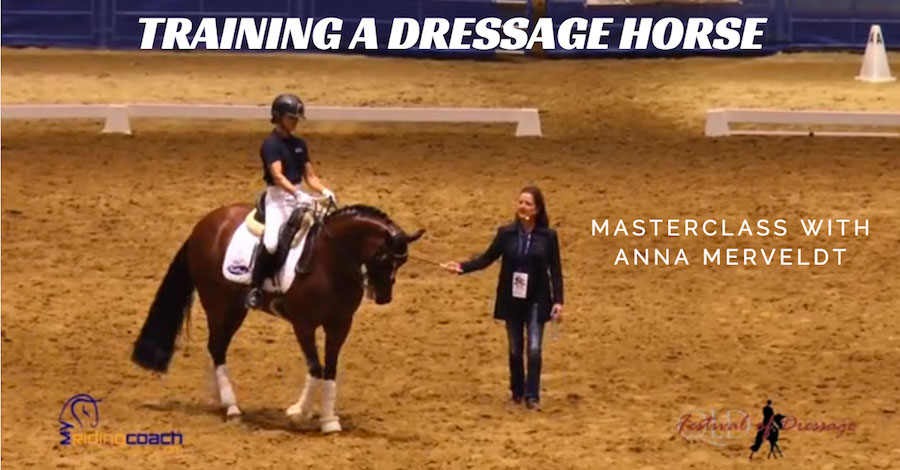 How-to-Train-A-Dressage-Horse